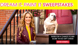 """Daytime USA Network – Win $5,000 in Ace Hardware gift cards from """"Dream it Paint it"""" Sweepstakes by March 29, 2015!"""