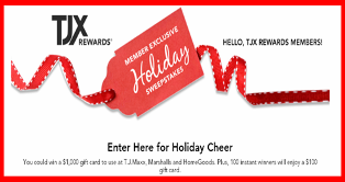 TJX Company – Win $500 TJX gift cards or $100 TJX gift card by December 23, 2015 – INSTANTLY!