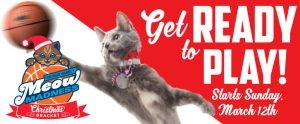 Hallmark Channel – Meow Madness Christmas Bracket – Win $10,000, $2,500 & $1,000