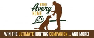 Banded Holdings – Bring Avery Home – Win a prize package valued up to $10,000