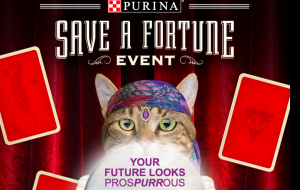 Nestle Purina PetCare – Purina Save a Fortune – Win a grand prize of a Zoltar cat condo & a $750 check OR many other minor prizes