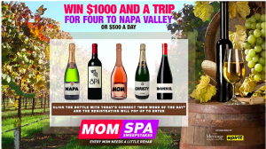 "Entertainment Marketing Group – ""Mom"" Every Mom Needs A Little Rehab – Win a grand prize of a Trip for 4 to Napa, CA OR 1 of 15 runner-up prizes"