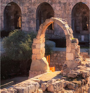 Colavita USA – Win a travel package for 2 to Jerusalem OR 1 of 3 minor prizes