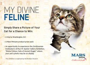 Mars Petcare – My Divine Feline – Win a trip for 2 to attend Divine Felines: Cats of Ancient Egypt in Washington, DC valued at $3,000