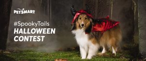 Petsmart – Spooky Tails Halloween – Win a major prize package OR 1 of 4 minor prizes