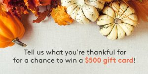 MyPoints – Tell Us What You're Thankful For – Win 1 of 5 Visa Gift Cards valued at $500 each OR 1 of 15 minor prizes