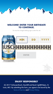 Anheuser-Busch – Busch/busch Light 500 To The 500 Contest – Social Media – Win See Rule #3 and Rule #5) Trip for Grand Prize winner and one (1) guest to Daytona Florida