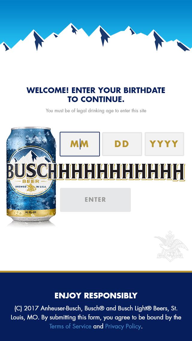 Anheuser-Busch – Busch/busch Light 500 To The 500 Contest