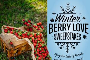 Farm Star Living – Florida Strawberry Sweepstakes
