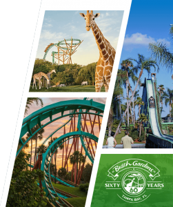 Busch Gardens Seaworld – 60th Celebration – Win a grand prize of a $5,000 Gold & Dimond Source Shopping Spree OR 1 of 64 minor prizes