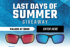 GAT Daily – Last Days Of Summer Giveaway – Win $500 Gift Card For SurvivalFrogcom STNGR Alpine Sunglasses STNGR Ridge Sunglasses STNGR Alpine Replacement Lenses STNGR Ridge Replacement Lenses A combined retail value of $860