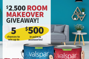 Do It Best – $2500 Valspar Room Makeover Giveaway – Win for any reason or c) has violated the rules of the giveaway