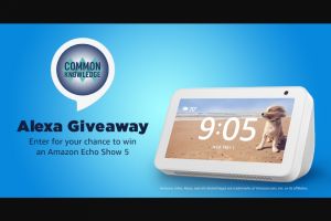 Game Show Network – Common Knowledge Alexa Giveaway – Win one Amazon Echo Show 5 device