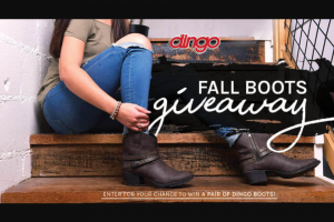 One Country Dan Post – Fashion Forward Boot Giveaway – Win (1) pair of Fashion Leather Boots