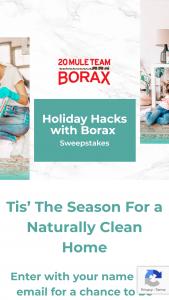 Henkel – Holiday Hacks With Borax Sweepstakes