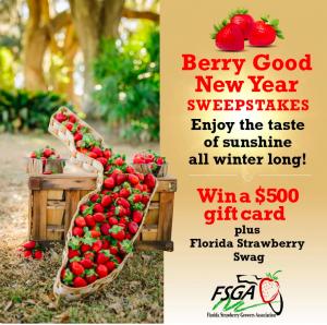 Farm Star Living – Win a $500 gift card PLUS Florida Strawberry goodies