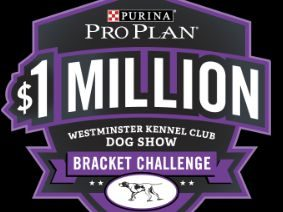 Nestle Purina PetCare Company – Win a major prize of a $1 million check OR 1 of 40 minor prizes of a year's supply of Purina Pro Plan brand dog or cat food