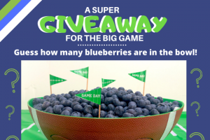Chilean Fruit Exporters – Super Blueberry Big Game Giveaway – Win VISA gift card