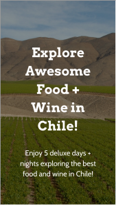 Wine Awesomeness – Chile Wine  Food Excursion Sweepstakes