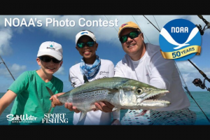 Sport Fishing – Noaa's Photo Contest – Win and lodging in the Florida Keys approx