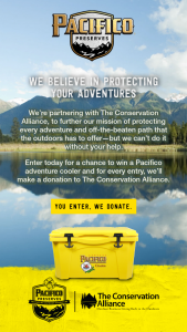 Crown Imports – Pacifico Summer 2020 Sweepstakes