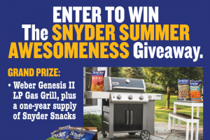 Snyder Of Berlin – Snyder Summer Awesomeness Giveaway Sweepstakes