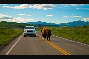 National Park Trips – Yellowstone Vacation – Win Trekking inn-based tour of Yellowstone