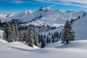 Reddyyeti – 2021 Ski & Snowboarding Jan Giveaway Sweepstakes