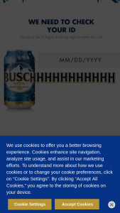 Anheuser-Busch – Busch Nascar Mustang Giveaway – Win one (1) 2021 Ford Mustang designed by Kevin Harvick