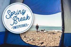 Napier – Spring Break Sweepstakes
