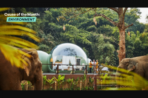 Omaze – Stay In A Jungle Bubble Above An Elephant Habitat In Thailand – Win a trip to Chiang Rai