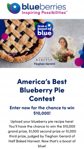 Us Highbush Blueberry Council – America's Best Blueberry Pie Contest – Win (1) Contest Grand Prize will be awarded