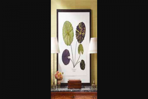 Veranda – Blackwell Botanicals Sweepstakes