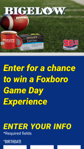 Bigelow Tea / Market Basket – Foxboro Game Day Experience – Win a Foxboro Game Day Experience consisting of two (2) tickets for the winner and one (1) guest to attend a 2021-2022  regular season professional football game in Foxboro